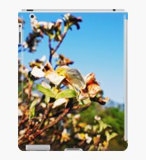 Shiloh Battlefield-227888 iPad Case/Skin