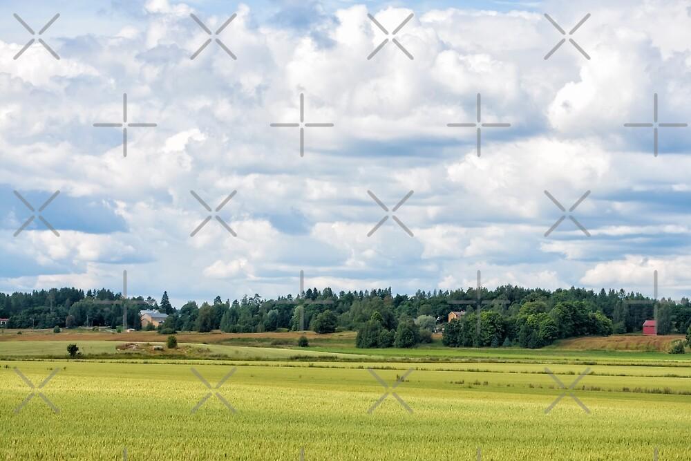 Countryside by ansaharju