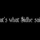 That's what Sidhe said by Nana Leonti