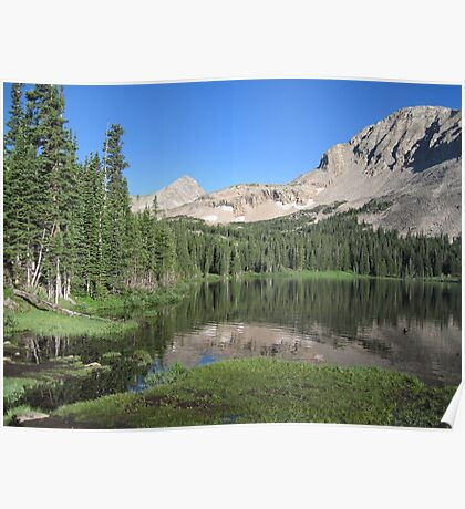Summer in the Rockies Poster
