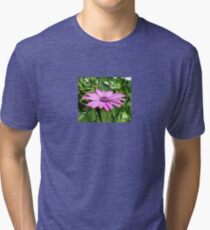 Purple Osteospermum Against Green Leaves Tri-blend T-Shirt