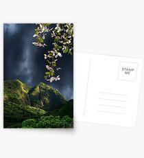 3539 Postcards