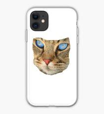 blue eyed cat iPhone Case