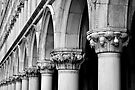 Palazzo Ducale by Tiffany Dryburgh