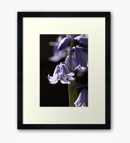 Glowing In The Dark Framed Print