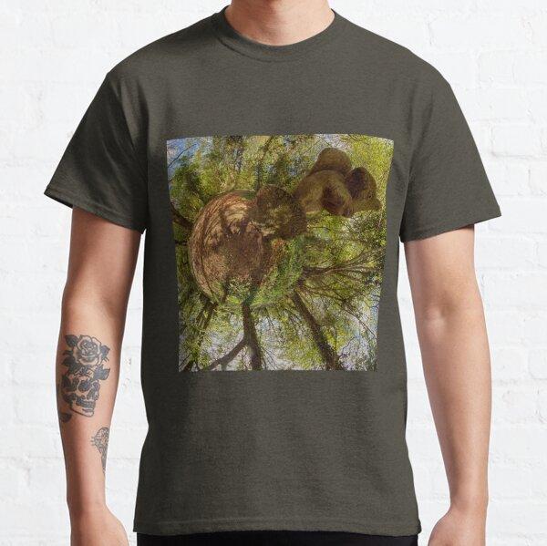 Squirrel Sculpture on path through Prehen Woods,  Derry Classic T-Shirt