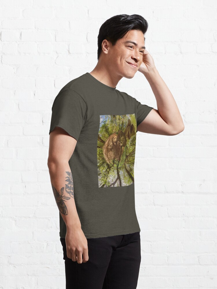 Alternate view of Squirrel Sculpture on path through Prehen Woods,  Derry Classic T-Shirt