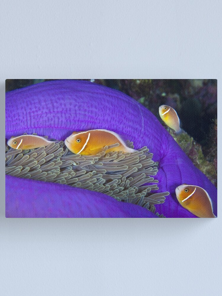 Alternate view of Family Canvas Print