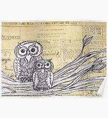 Owls 45 Poster