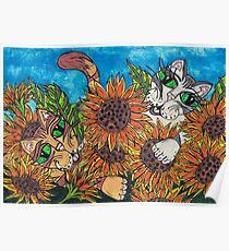 Sunflower Cats Poster