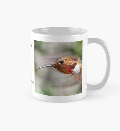 Hummingbird Mugshot Mug #7 Mug
