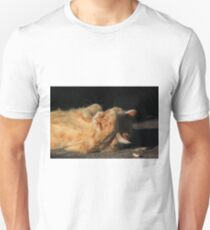 Ginger cat licking paw on garden path T-Shirt