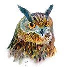 Owl by vasylissa