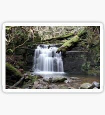 Strickland Falls Sticker