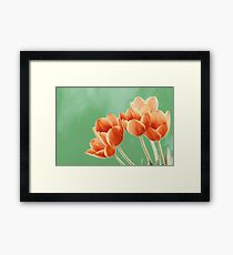 Red And Orange Tulips Flowers Bouquet Framed Print