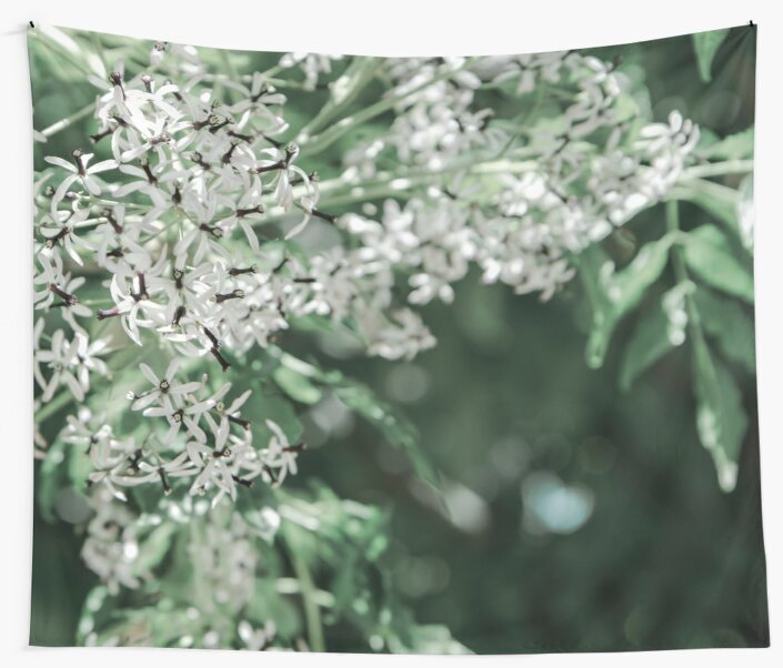 Nature in white and green by VanGalt