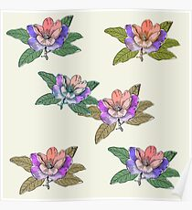 Block Colour Floral Pattern Poster