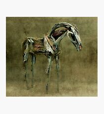 Wooden Horse Photographic Print