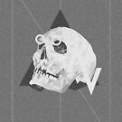 triangle skull by roxycolor