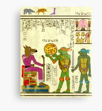 Lámina metálica Papiro TMNT