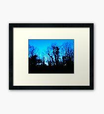 Nature - Tree 02 Framed Print