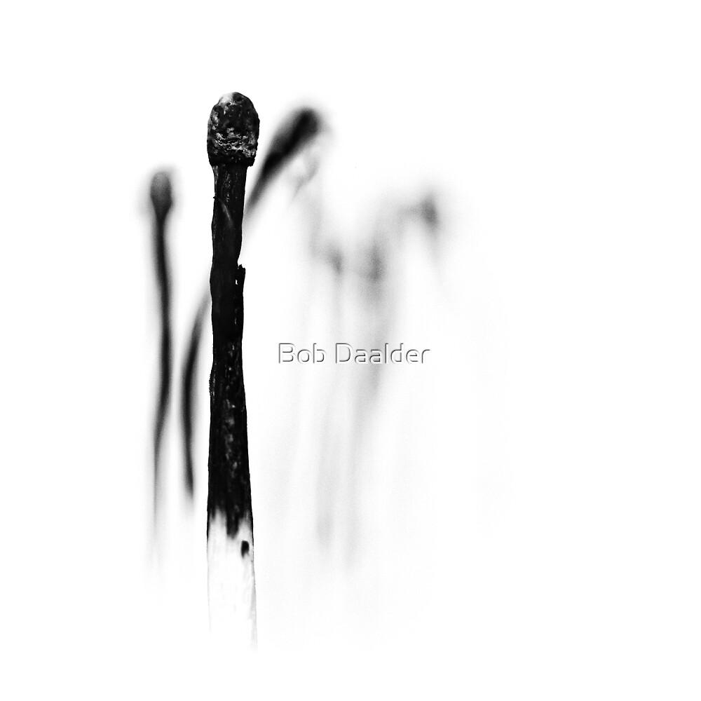 Frank.... by Bob Daalder