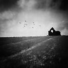 Remains by Ursula Rodgers Photography