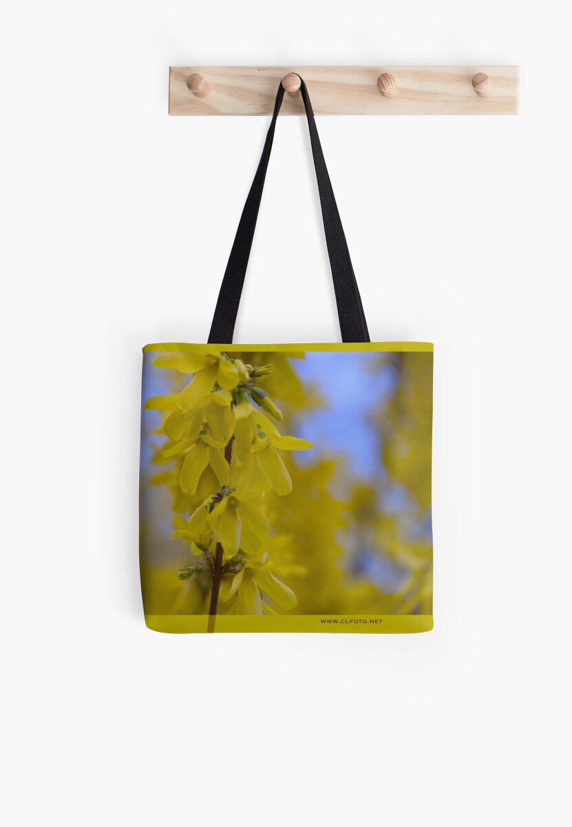 Yellow flowers near the Talvera River, Bolzano/Bozen, Italy by L Lee McIntyre