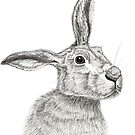 Merlin the Hare by sarahgeefineart