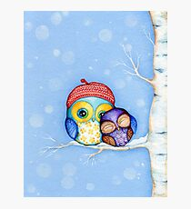 Owl in a Little Red Beret Photographic Print