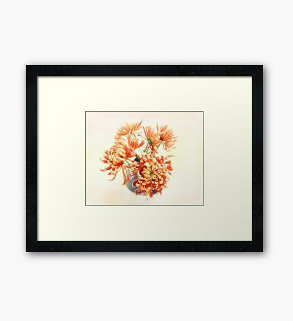 Colorful Red and Yellow Mums Still Life Framed Print