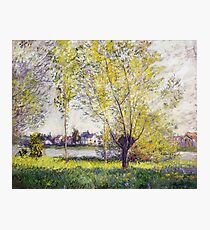 Claude Monet - The Willows Photographic Print