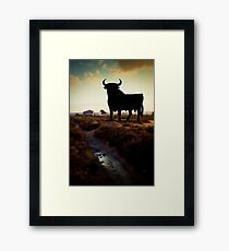 OS BORN Framed Print