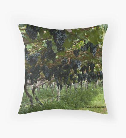 Grapes in the Castle Mareccio Vineyard, Bolzano/Bozen, Italy Throw Pillow