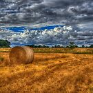 The Last Bale  by Nigel Bangert