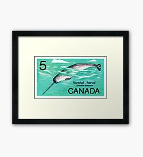 1968 Canada Narwhal Postage Stamp Framed Print