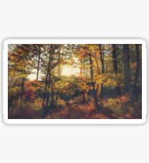 Andersons Cabin Fall View Sticker