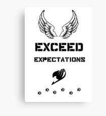 Exceed Expectations Canvas Print