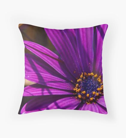 Purple African Daisy Close Up Throw Pillow