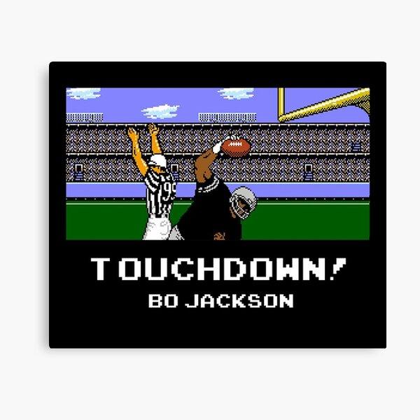 Touchdown! Bo Canvas Print