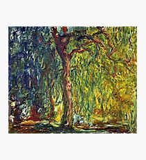 Claude Monet - Weeping Willow (1918–19)  Photographic Print