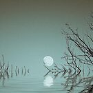 Dusk Moon on the Water. by Dave Harnetty