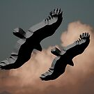 Chiselled Eagles by Heidi Foreman