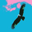 Sea Eagle by Heidi Foreman