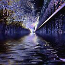 Canal Dream by Dave Harnetty