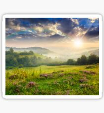 cold fog in mountains on forest at sunset Sticker