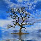 Tree On An Island by Dave Harnetty