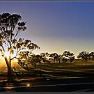 A cold spring sunrise by Wolf Sverak