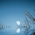 A Blue Moon on the Water by fr3spirit7