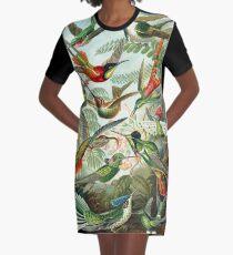 birds vintage cool design Graphic T-Shirt Dress
